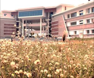 Top Thirty MBA/PGDM Colleges in India