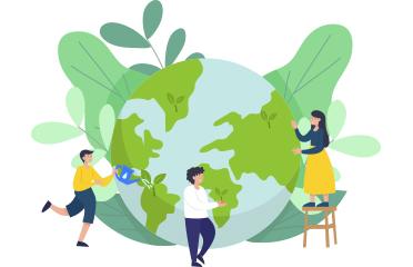Environmental Engineering Internship