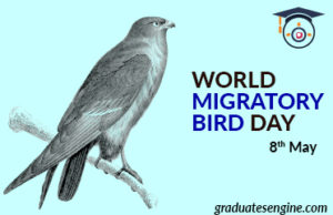World-Migratory-Bird-Day